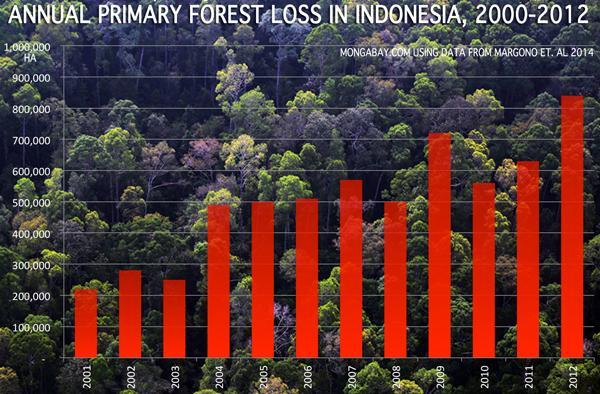 Trouble in Sumatra