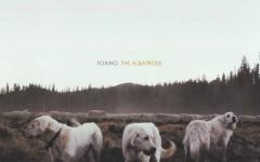 The cover art for Foxing's album, The Albatross.
