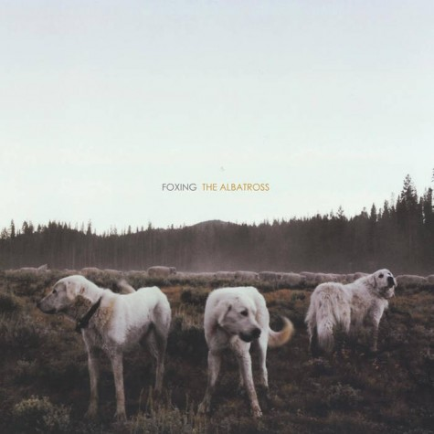 The cover art for Foxing