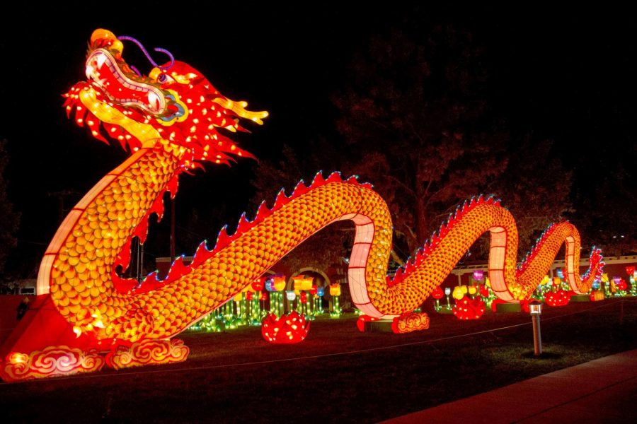 Dragon+Lights+Festival